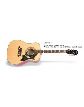 Guitarra Epiphone Dove