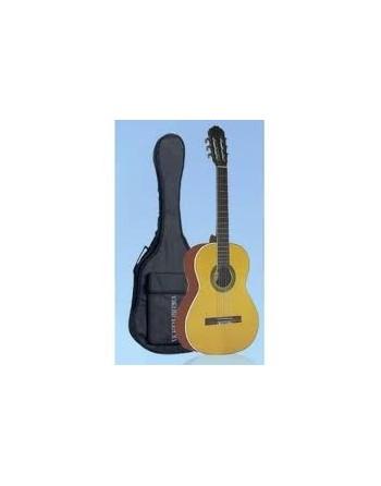 Guitarra Acustica VG